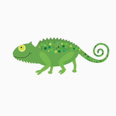 mimicry: Cartoon cute Chameleon illustration for the children