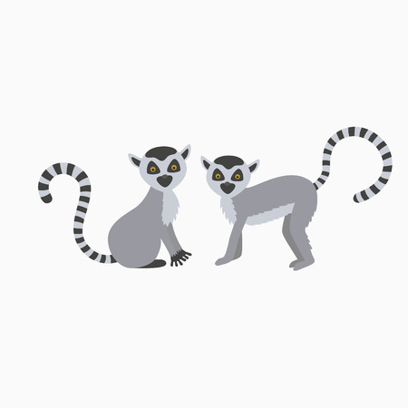 two wild lemur on white background. one sits the other stands. illustration for children
