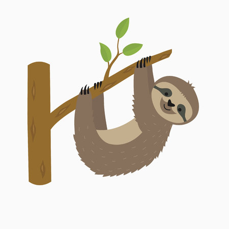Sloth hanging on tree branch . Cute cartoon character. Wild jungle animal collection. Baby education. Isolated. White background. Flat design Vector illustration