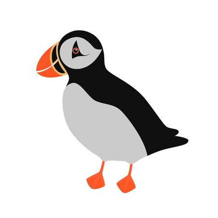 Atlantic Puffin isolated on white background. Vector illustration for children