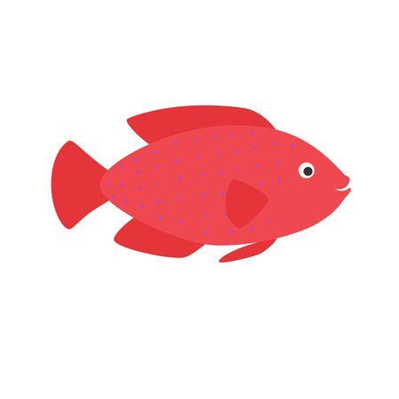 red aquarium exotic fish tropical