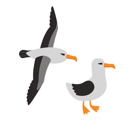 albatross: Bird Albatross Set Cartoon Vector Illustration
