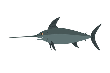 marline: Swordfish vector, Isolated on white background, illustration for the children