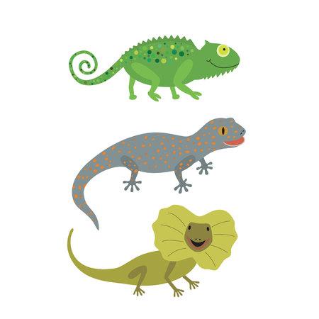 Different kind of lizards icons set. Illustration