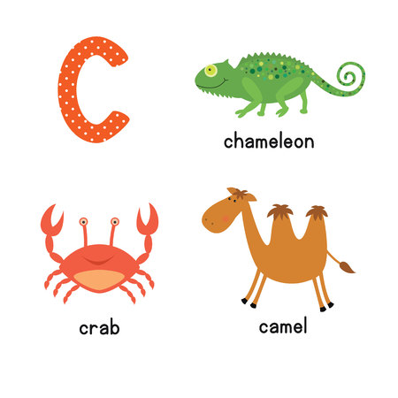 children crab: Cute children zoo alphabet C letter tracing of funny animal cartoon for kids learning English vocabulary. Illustration