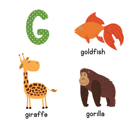 Cute zoo alphabet in vector.G letter. Funny cartoon animals: Goldfish giraffe,gorilla. Alphabet design in a colorful style. Illustration