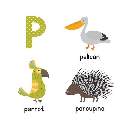귀여운 어린이 동물 알파벳 P 문자 재미 있은 동물의 만화 어린이위한 만화. 앵무새 고슴도치 펠리컨 일러스트