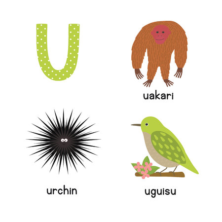 Cute zoo alphabet in vector. U letter. Funny cartoon animals: urchin, uakari, uguisu. Alphabet design in a colorful style.