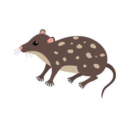 threatened: Standing Quoll animal cartoon character isolated on white background.