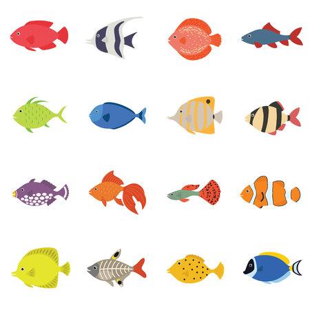 Cute fish vector illustration icons set. Tropical fish, sea fish, aquarium fish set isolated on white background. Illustration