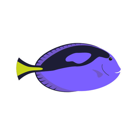 Tropical ocean surgeon fish, vector illustration isolated on white background.