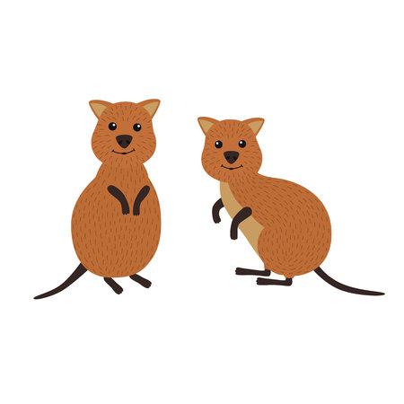 Cartoon animals. A pair of quokka