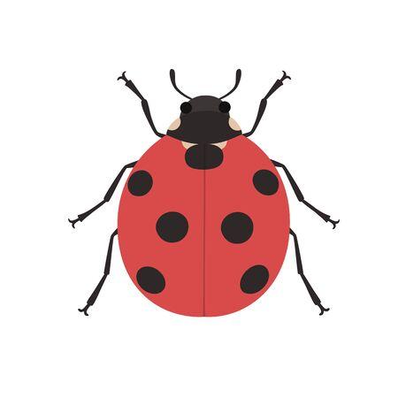 black and white: Cute ladybug cartoon