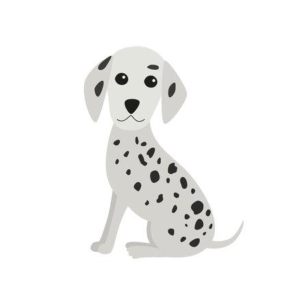 Dalmatian dog sitting. Vector Illustration