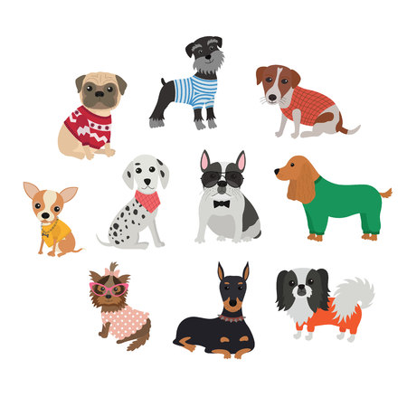 Set of different breeds of dogs in clothing and accessories Ilustracja