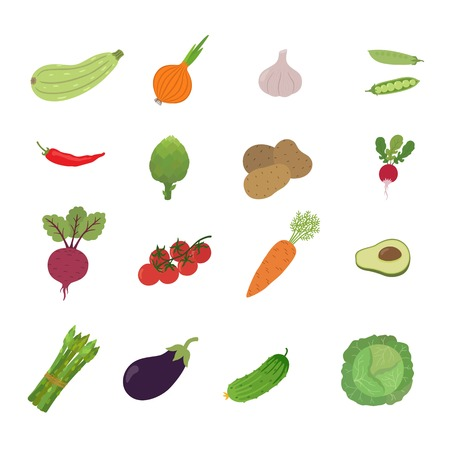 illustration set vegetable vector icon isolated on white background. Beets, zucchini, potatoes, tomato, onion, eggplant, cabbage, cucumber, carrots, pepper, garlic Illustration