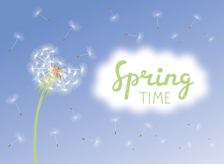 Inscription Spring Time. Dandelion with flying seeds on cloudy sky. Vector illustration.