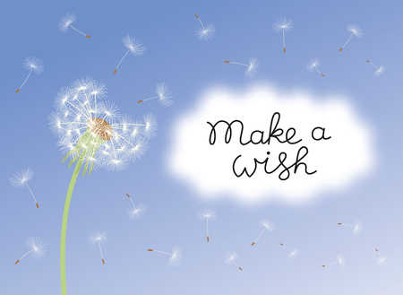 Make a wish card with dandelion fluff. Illustration