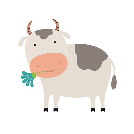 Cute cartoon cow with a flower. Vector illustration on white isolated background