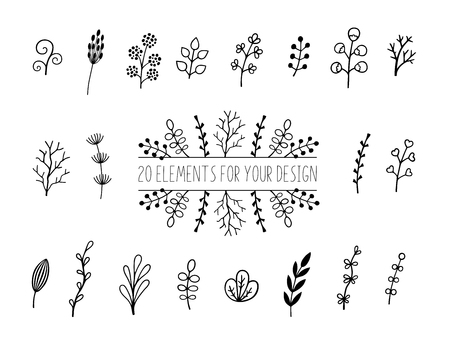 Floral and herbal set. Botanical elements for design on a white background. Sketch of branch, foliage,leaves, berries. Elements for your design