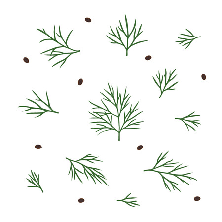 Hand drawn dill isolated. Template for your design works. Vector illustration on white isolated background Ilustracja