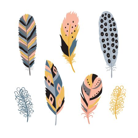 Colorful detailed bird feathers set. Hand drawn editable elements, realistic style, vector illustration. Ilustracja