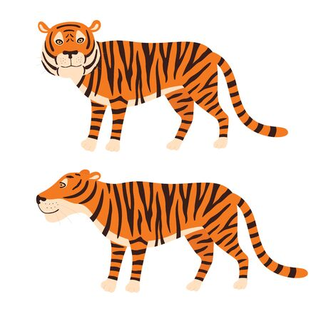 Tiger stand, vector illustration isolated on white background. EPS10