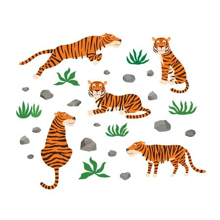 Set of tigers, leaves and stones. Vector illustration isolated on white background.