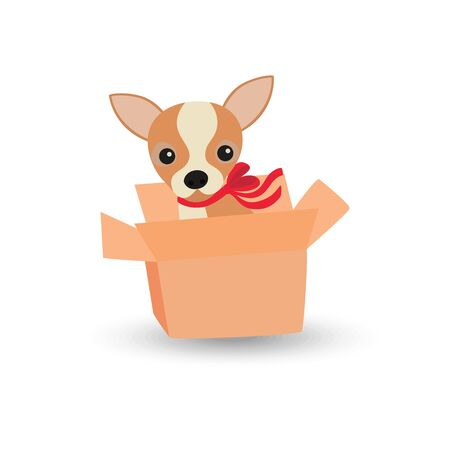 Cute Chihuahua dog with a red bow in a box
