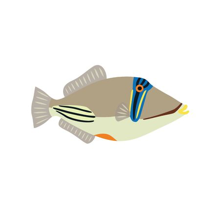 Picasso triggerfish icon on white background. Vector illustration.