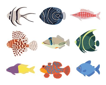 Set of exotic tropical marine aquarium colorful fish. Vector illustration isolated on white background. Ilustracja