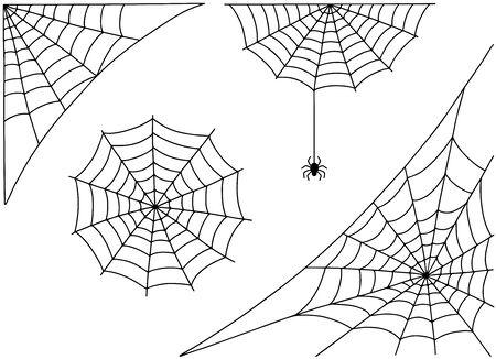 Halloween spider web and spider isolated on white background. Hector venom cobweb set.