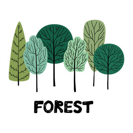 Forest. Vector illustration isolated on white background.