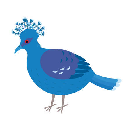 Crowned dove. A blue pigeon with a fan on its head Ilustracja