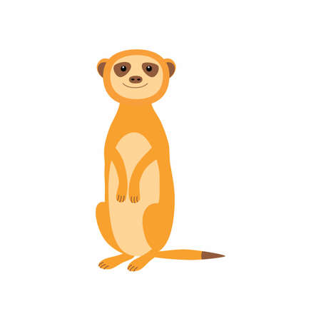 Cute meerkat. Vector illustration isolated on white background.