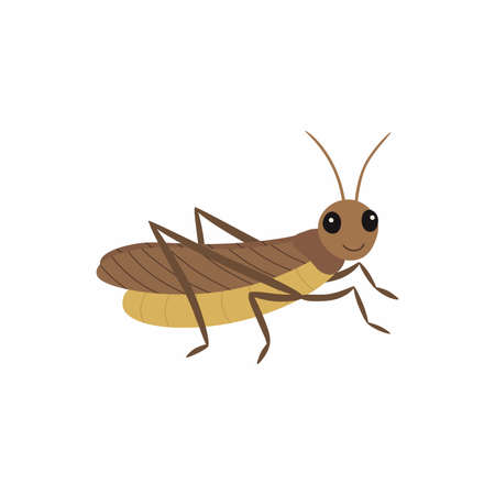 Locust. Vector illustration isolated on white background. Ilustracja