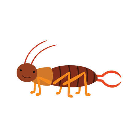 Crawling Earwig insect animal cartoon character isolated on white background.