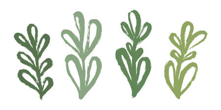 A set of green organic branches with leaves, hand drawn with a brush stroke. Decorative branch. 向量圖像