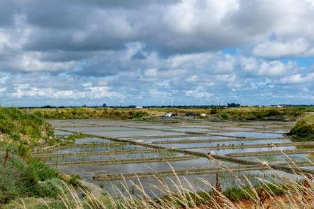 salt marshes Stock Photo