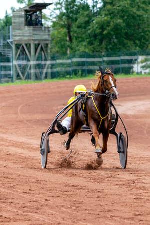 horse racing hippodrome of feurs Editorial
