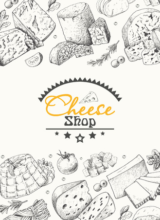 Vector background with a variety of cheeses. Vector illustration for your design