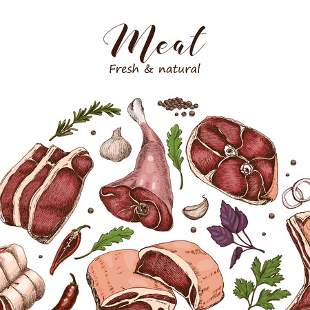 Vector background with different color meats in sketch style. Vector illustration for your design  イラスト・ベクター素材
