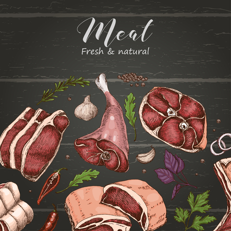 Vector background with different color meats in sketch style. Vector illustration for your design Ilustração