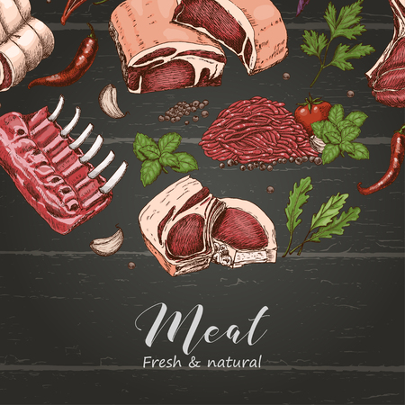 Vector background with different color meats in sketch style. Vector illustration for your design Foto de archivo - 127666945