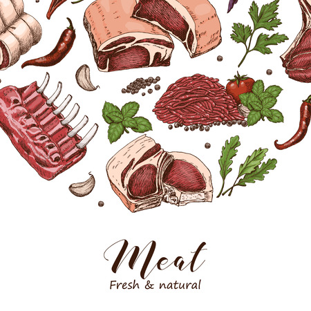 Vector background with different color meats in sketch style. Vector illustration for your design