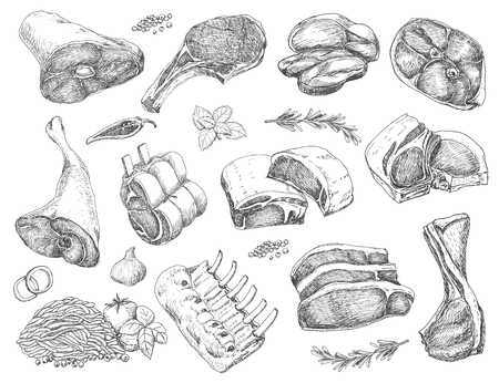 Vector set of different meats in sketch style Foto de archivo - 121365162