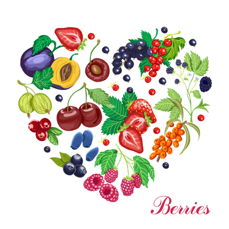 Vector heart made of various berries. Vector illustration for your design Illustration