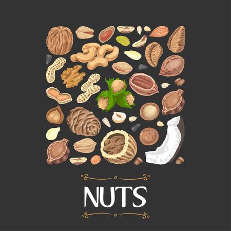 Carré isolé de noix et de graines. Vector illustration pour votre conception Vecteurs