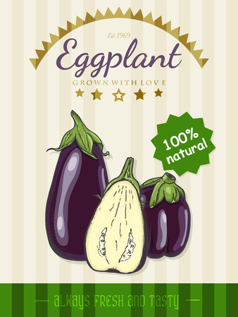 Vector poster with a eggplant in a sketch style. Vector illustration for your design