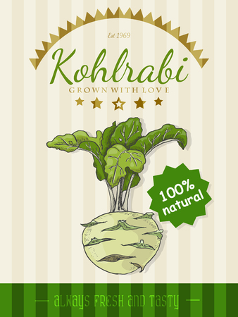 Vector poster with a kohlrabi in a sketch style